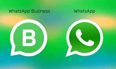 WhatsApp vs WhatsApp Business App: What's the Difference?